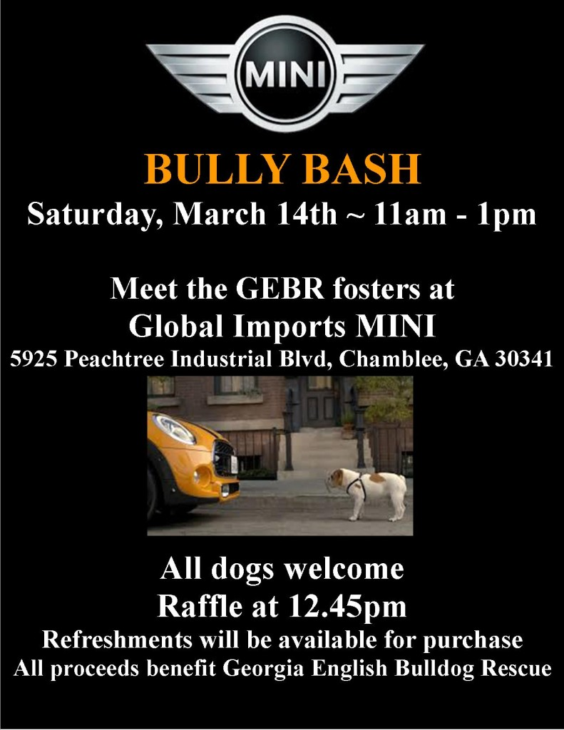 You Are Invited To The Mini Cooper Bully Bash!