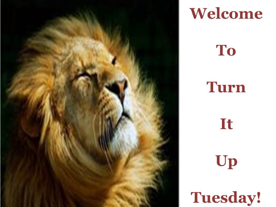 Let's Do Turn It Up Tuesday!